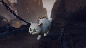 Riding the cat together!